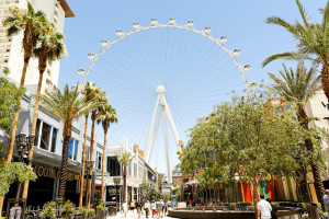 The High Roller May Have Cost Hundreds of Millions to Build
