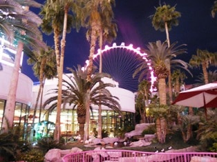 The High Roller Rises Above the Flamingo