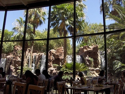 View from the Paradise Garden Buffet at the Flamingo